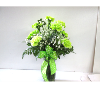 Dozen Green Carnations in Worcester MA, Holmes Shusas Florists, Inc