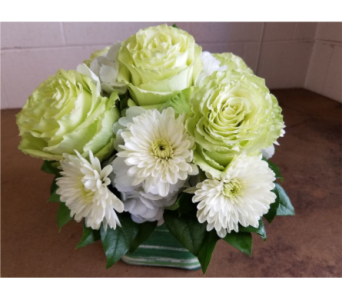 Luck of the Irish in Nashville TN, Emma's Flowers & Gifts, Inc.