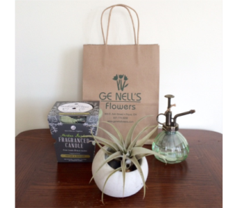 GeNell's Original Plant Lovers Gift Set in Piqua OH, Genell's Flowers