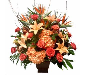 Brighter Days in Clearwater FL, Hassell Florist