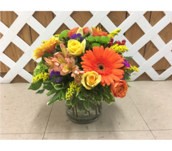 Bright & Colorful with Gerbs in Purcellville VA, Purcellville Florist