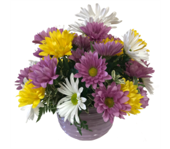 Daisies in Bloom Bouquet in Moorhead MN, Country Greenery