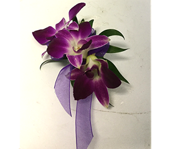 Dendrobium Orchid Corsage in Raleigh NC, North Raleigh Florist
