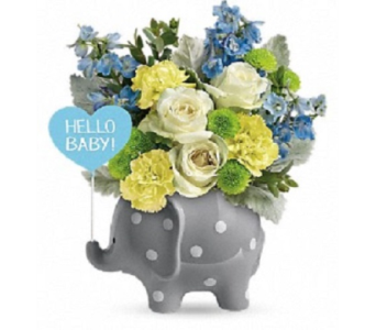 Hello Sweet Baby-Blue in Big Rapids MI, Patterson's Flowers, Inc.