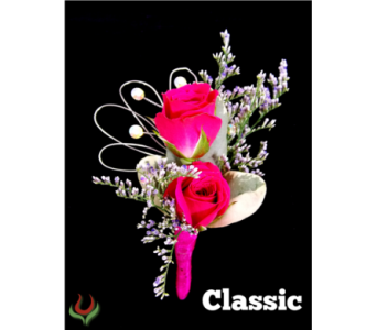 Classic Boutonniere in Indianapolis IN, Steve's Flowers and Gifts