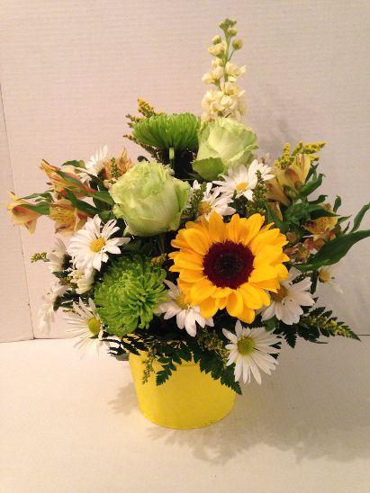 Blinded by the Light in Nashville TN, Emma's Flowers & Gifts, Inc.