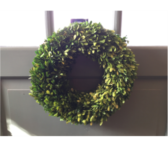 Large Boxwood Wreath  in Mount Kisco NY, Hollywood Flower Shop