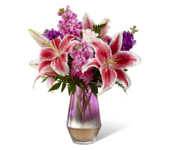 Shimmer & Shine in Waterbury CT, The Orchid Florist