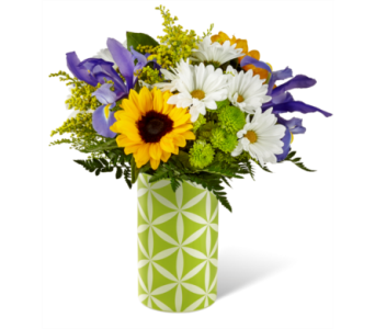 Sunflower Sweetness in Waterbury CT, The Orchid Florist
