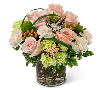 Expressions of Gratitude in Champaign IL, April's Florist