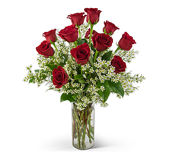 Swoon Over Me Dozen Red Roses in Oshkosh WI, Flowers & Leaves LLC