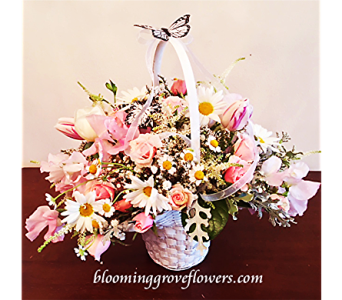 BGF7955 in Buffalo Grove IL, Blooming Grove Flowers & Gifts