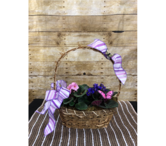 Vibrant Violets Basket in Greenville SC, Expressions Unlimited