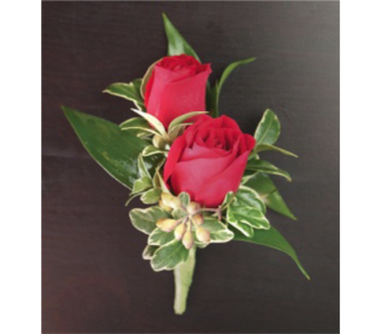 Red Rose Duo in Campbell CA, Citti's Florists
