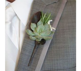 Succulent boutonniere in Campbell CA, Citti's Florists