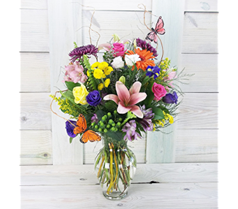 Clara in Raleigh NC, North Raleigh Florist