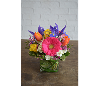 Jubilant in Raleigh NC, North Raleigh Florist