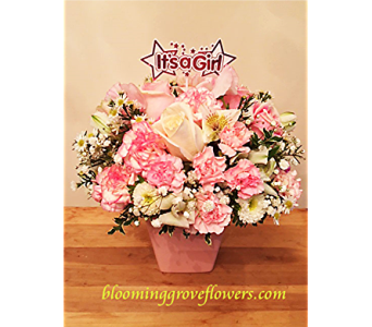 BGF8180 in Buffalo Grove IL, Blooming Grove Flowers & Gifts