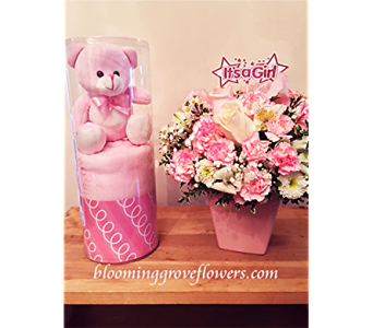 BGF8184 in Buffalo Grove IL, Blooming Grove Flowers & Gifts