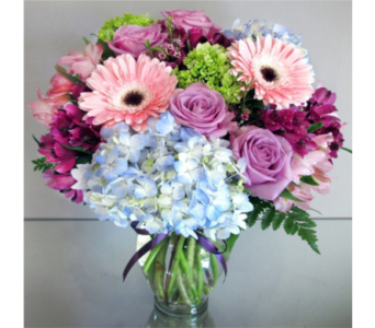 Cape Cod Seabreeze in Needham MA, Needham Florist