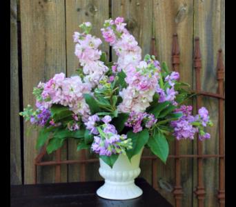 Sweet stock garden in hot springs ar johnson floral co sweet stock garden in hot springs ar johnson floral mightylinksfo
