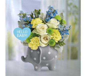 Hello Sweet Baby - Blue in Indianapolis IN, George Thomas Florist