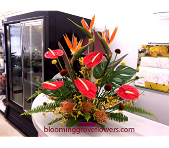 BGF2422 in Buffalo Grove IL, Blooming Grove Flowers & Gifts