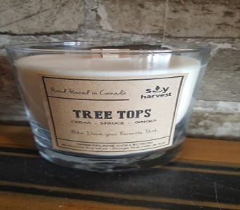 Timberflame Candle-- Tree Tops in Richmond Hill ON, FlowerSmart