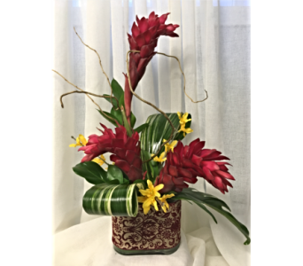 Ginger&Oncidium in Grand-Sault/Grand Falls NB, Centre Floral de Grand-Sault Ltee
