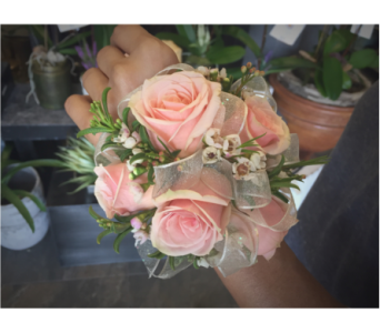 Pink Spray Roses Wristlett with Iridescent Trim in Wellington FL, Wellington Florist