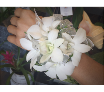 White Orchid Wristlet with Silver Trim in Wellington FL, Wellington Florist