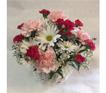 Delightful Daisy & Carnation Basket in Philadelphia PA, Schmidt's Florist & Greenhouses