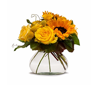 Sand Springs - Sand Springs Golden Fields in Sapulpa OK, Neal & Jean's Flowers & Gifts, Inc.