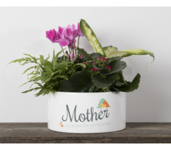 Mother Ceramic Planter in Calgary AB, The Tree House Flower, Plant & Gift Shop