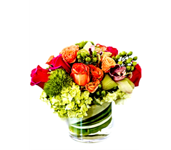 A Twist Of Lime in Boca Raton FL, Boca Raton Florist
