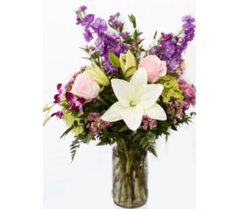 Brighten The Day in Boca Raton FL, Boca Raton Florist