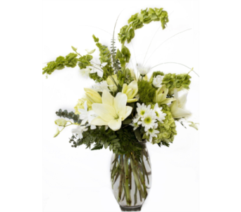 Going Green in Boca Raton FL, Boca Raton Florist