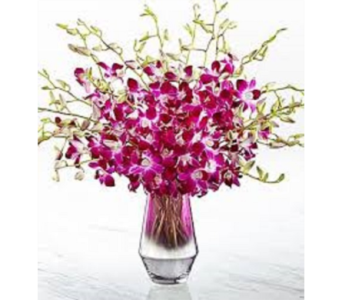 Pink at Heart Orchid Bouquet in Flower Mound TX, Dalton Flowers, LLC