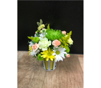 Picket Fence Posies in Fargo ND, Dalbol Flowers & Gifts, Inc.