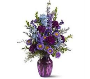 Royal Purple  in Campbell CA, Citti's Florists