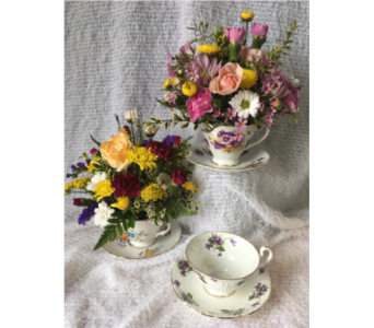 Danielle's Cozy Cup and Saucer in Dieppe NB, Danielle's Flower Shop