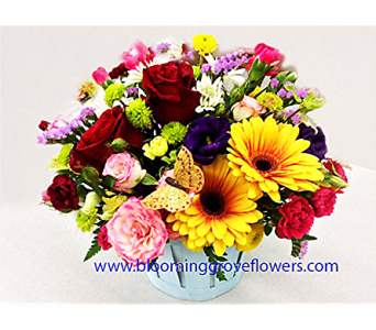 BGF1431 in Buffalo Grove IL, Blooming Grove Flowers & Gifts