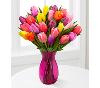 24 Tulips in Oliver BC, Flower Fantasy & Gifts