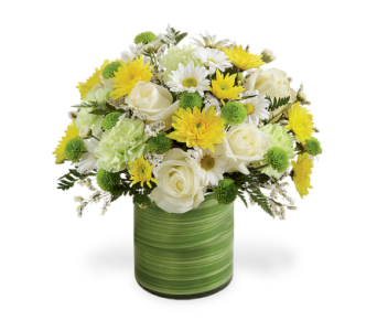 Color Your Day in Big Rapids MI, Patterson's Flowers, Inc.