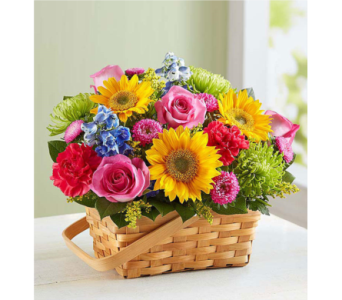 Sunny Garden Basket in Huntington WV, Archer's Flowers and Gallery