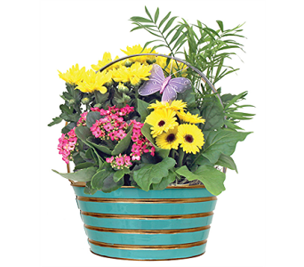 Mood Planter in St Catharines ON, Vine Floral