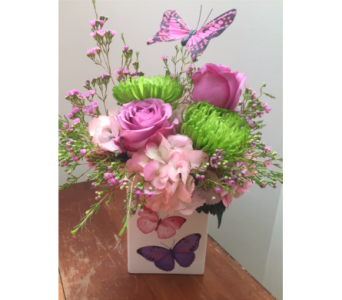 Butterfly Blooms in East Syracuse NY, Whistlestop Florist Inc