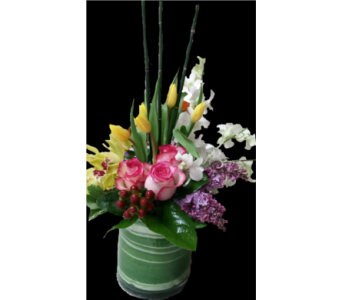 Touch of the Tropics in Gaithersburg MD, Flowers World Wide Floral Designs Magellans