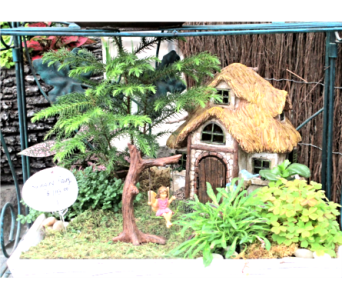 Fairy Garden Arrangements in Cincinnati OH, Robben Florist & Garden Center