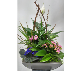 Planter in Tin Container in Alliston, New Tecumseth ON, Bern's Flowers & Gifts
